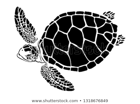 Turtle Silhouette Isolated Icon. Vector Amphibian Stock photo © robuart