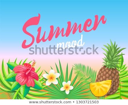夏 気分 バナー ベクトル 休暇 プラカード ストックフォト © robuart