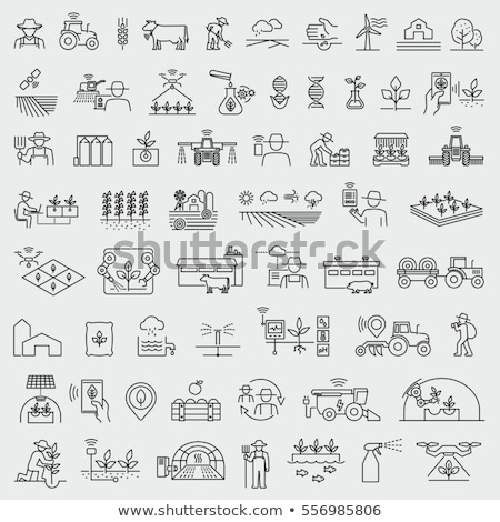 Agrícola vector delgado línea icono tractor Foto stock © pikepicture