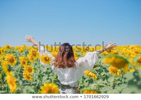 bonitinho · feminino · amarelo · floral · campo - foto stock © iserg