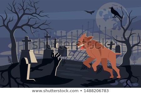 Black dog running through woods at night  Stock photo © lightpoet