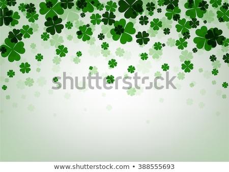 Yeşil kâğıt yonca beyaz Aziz Patrick Günü Stok fotoğraf © dolgachov