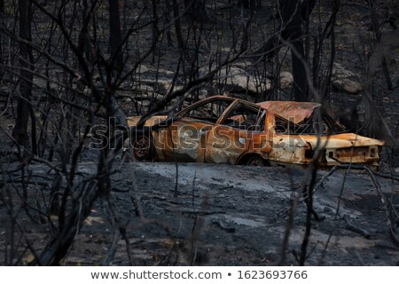 Old abandoned car burnt out during bush fires Stock photo © lovleah