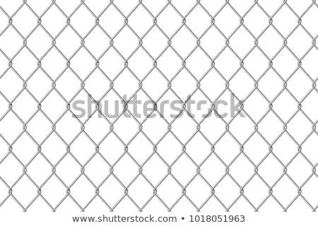 Cadena enlace cerca sin costura aislado blanco Foto stock © DeCe