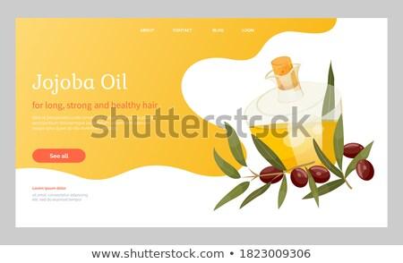Golden Jojoba Oil in Vessel, Branch with Drupes Stock photo © robuart