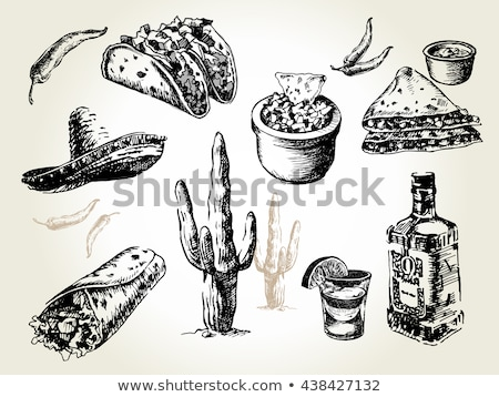 Mexican food hand drawn vector doodles illustration. Cuisine poster design. Stock photo © balabolka