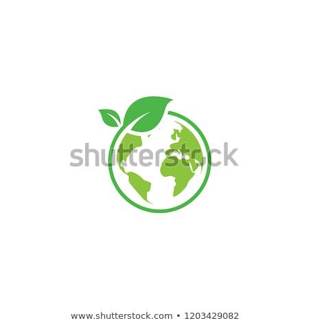 Verde mundo folhas verdes borboleta folha fundo Foto stock © Sarunyu_foto