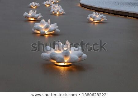 Mesterséges citromsárga lótusz fehér természet üveg Stock fotó © pinkblue