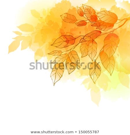 акварель осень ручной работы синий рисунок Сток-фото © Galyna