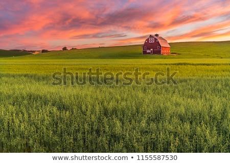 kırmızı · ahır · saman · alan - stok fotoğraf © Kenneth_Keifer
