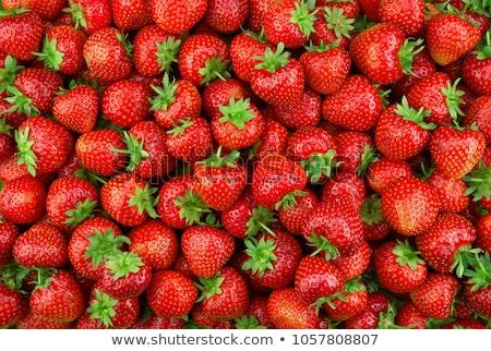 truskawki · charakter · lata · gospodarstwa · rynku · kolor - zdjęcia stock © deymos