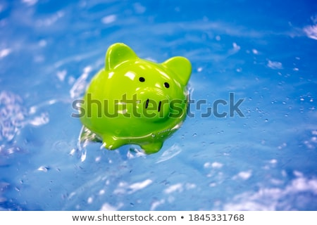 Drowning currency Stock photo © Lightsource