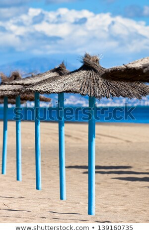 Idyllic tropical beach. Vertical shot. Stock photo © moses