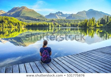 Magas hegyek Szlovákia panoráma hegy tó Stock fotó © macsim