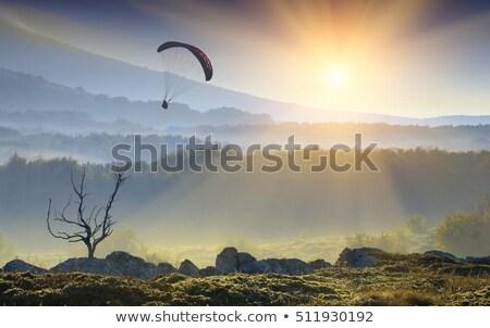 silhouette flying into the sunrise stock photo © antonihalim