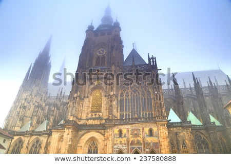 Doors of gothic St. Vitus cathedral in Prague, Czech Stock photo © Nejron