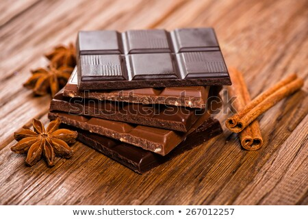 Aromatic set of chocolate,anise and cinnamon on cocoa powder Stock photo © dla4