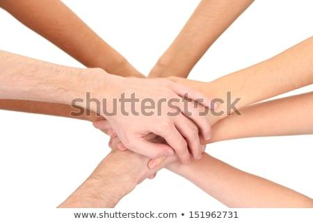 Mains isolé blanche photo travail d'équipe groupe Photo stock © tetkoren
