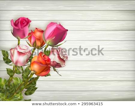 güller · ahşap · eps · 10 · romantik - stok fotoğraf © beholdereye