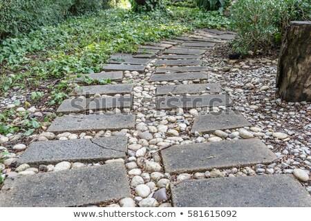 Old stone paving in the garden Stock photo © iriana88w