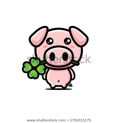 Cute baby pink piggy with a shamrock Stock photo © adrian_n