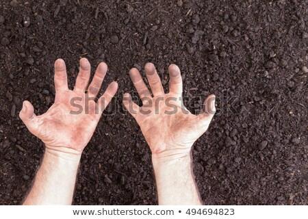 Nudo mani suolo copia spazio frustrazione poveri Foto d'archivio © ozgur