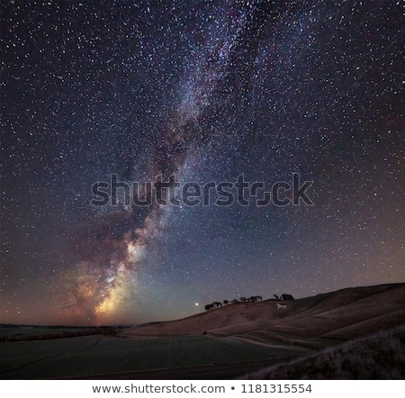 звездой небе тумана осень дерево Сток-фото © ssuaphoto