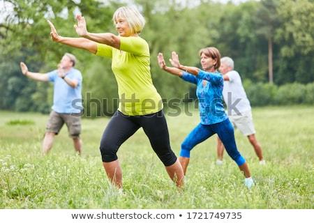 senior · vrouw · tai · chi · yoga · oefening · mooie - stockfoto © phakimata