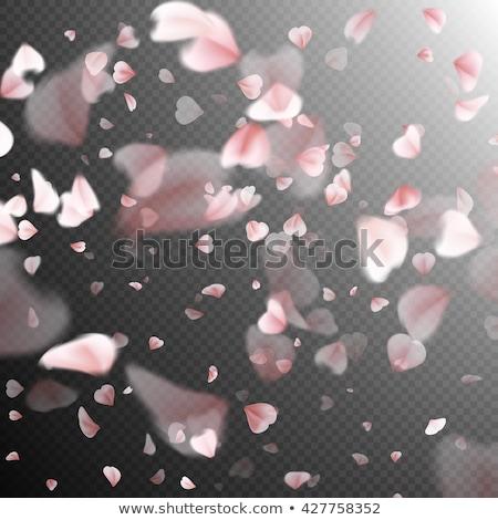 rózsaszín · sakura · virágok · izolált · fehér · eps - stock fotó © beholdereye