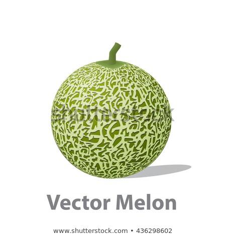 Valósághű dinnye labda izolált fehér vektor Stock fotó © jiaking1