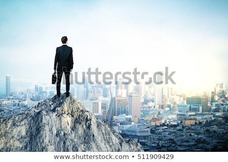 Bem sucedido empresário topo negócio ilustração montanha Foto stock © sgursozlu