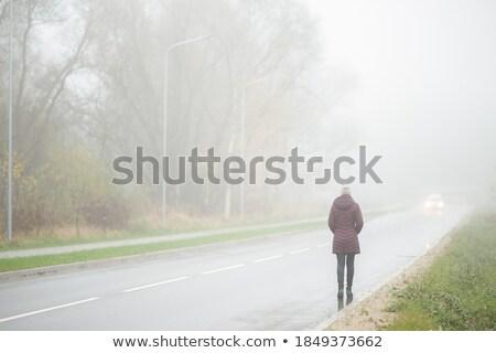 дороги утра туман автомобилей движущихся сцена Сток-фото © haraldmuc