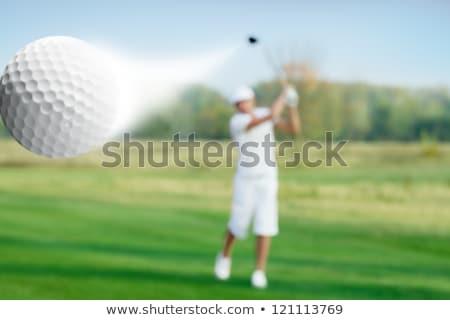 Golf Ball In Flight Stock photo © albund