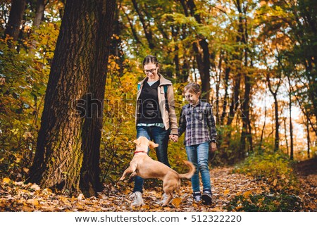 Girl with two dogs forest scene Stock photo © bluering