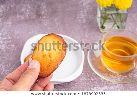 Homemade lemon cookies Madeleine stock photo © Melnyk