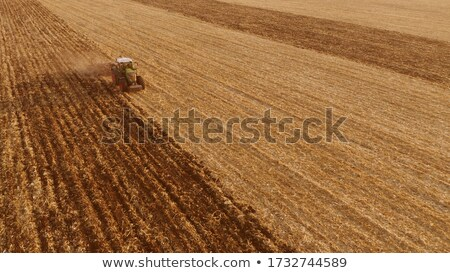 An endless agricultural field after harvesting with tractor on it against a blue cloudy sky on a sum Stock photo © artjazz