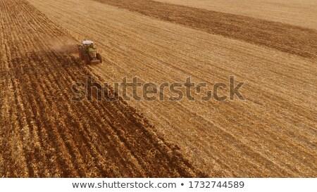 agrarisch · veld · oogst · trekker · zaaien · voorbereiding - stockfoto © artjazz