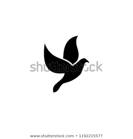 鳩 平和 にログイン 実例 オリーブ 動物 ストックフォト © adrenalina