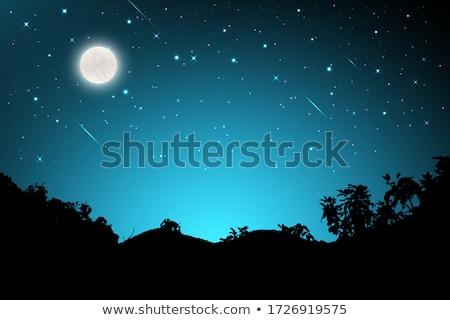 Silhouette scene with fullmoon at night Stock photo © colematt