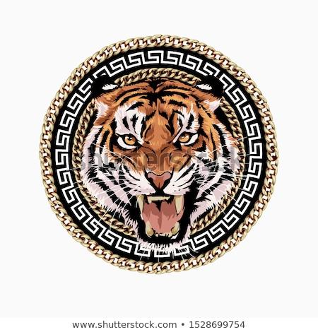 Tigre natureza quadro ilustração folha fundo Foto stock © bluering