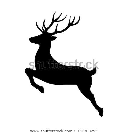 Veado ícone vetor longo sombra teia Foto stock © smoki