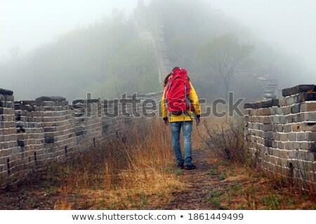 Man Geel jas rugzak lopen heuvel Stockfoto © denbelitsky