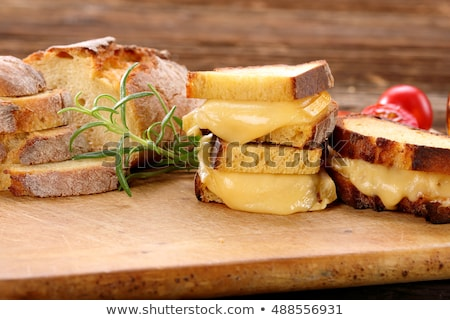 grilled cheese with fresh rosemary stock photo © alex9500