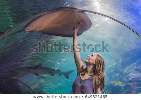 Young woman touches a stingray fish in an oceanarium tunnel Stock photo © galitskaya