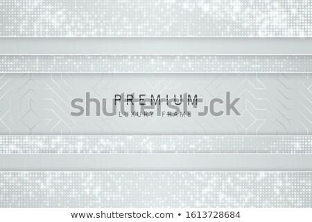 ベクトル 白 銀 抽象的な 見出し 高級 ストックフォト © Iaroslava