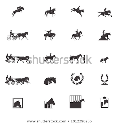 Equestrian sport Stock photo © mayboro