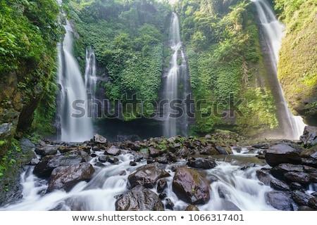 Belo tropical cachoeira bali Indonésia chuva Foto stock © galitskaya