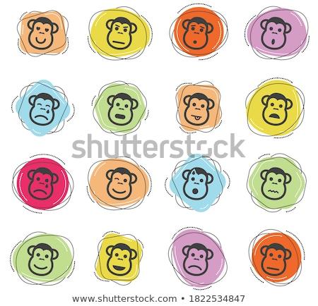 Macaco emoções simplesmente ícones vetor teia Foto stock © ayaxmr