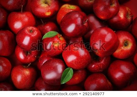 Grupo manzana roja aislado frutas rojo Foto stock © posterize