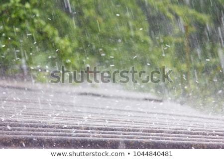 neige · route · tempête · ciel · voiture · travaux - photo stock © studiotrebuchet